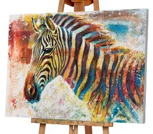 colourful Zebra