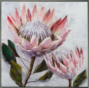 Hübsche Protea I