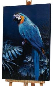 Papagei in blau