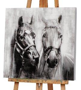 Pferde in schwarz weiß