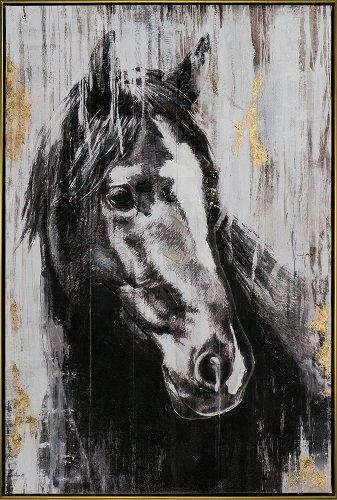 Stallion in black white