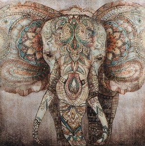 tattooed elephant