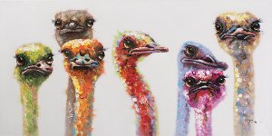 big ostrich familiy