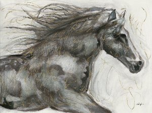 wild horse III