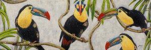 colourful toucan
