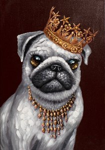Pug with golden crown