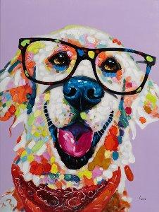 Drôle de chien coloré avec des lunettes