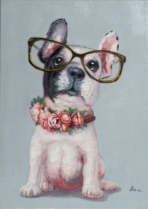 Petit chien à lunettes