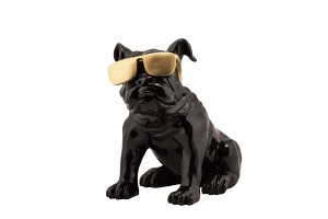 Bulldog with golden Sunglasses