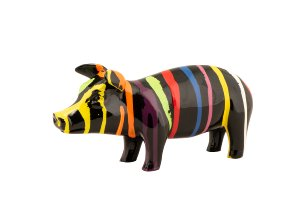 Colorful piggy