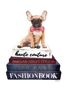 Fashion Books with dogs