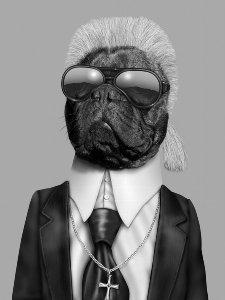 Karl Lagerfeld dog
