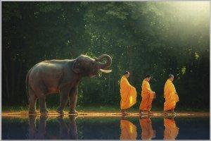 Mönchwanderung mit Elefant