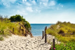 Sand path to the sea 1