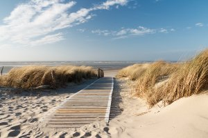 Wooden path to the sea 1