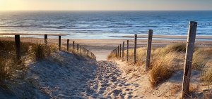 Sand path to the sea 2