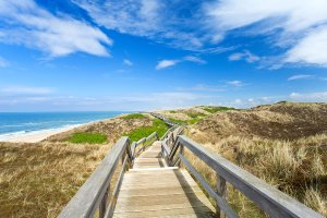 Wooden path to the sea 2