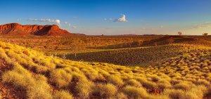 Arizone