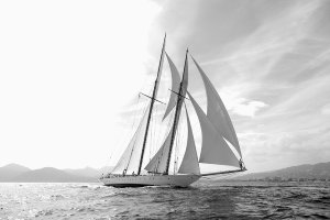 Sailing boat in black and white