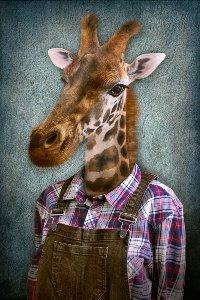 Giraffe mit Latzhose