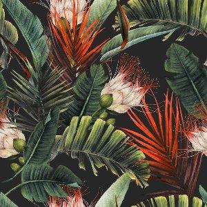 Fleurs de la jungle
